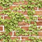 Wallhub Serene, 벽지 #W10183-2