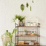 Nature | Botanique #10254
