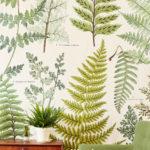 Nature | Botanique #10336