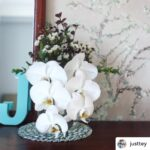 Wallhub x Justtey - Almond Blossom