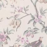 Europe Flos Floris (Close up) #90311
