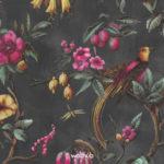 Europe Flos Floris (Close up) #90315