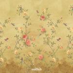 Europe Flos Floris (Close up) #90343