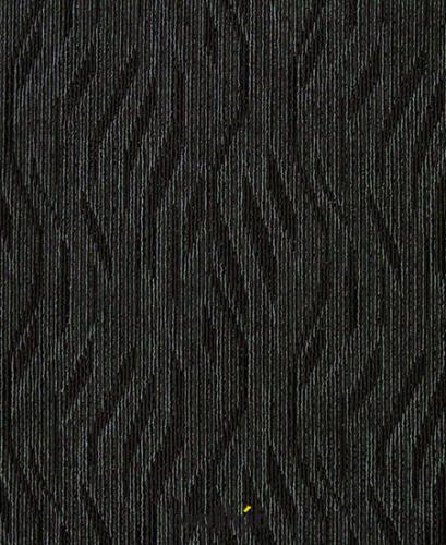Black Lily TK04
